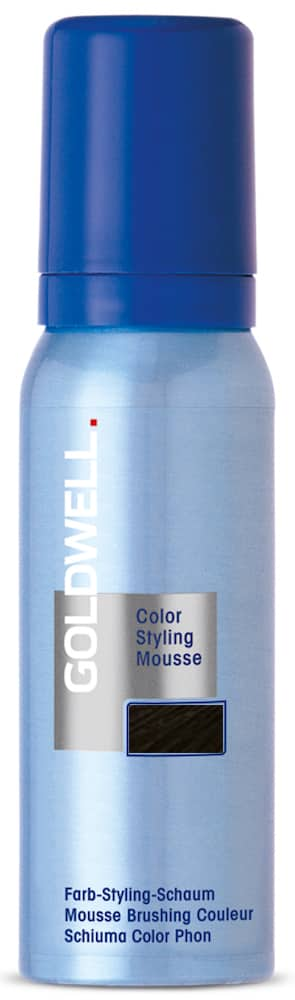 6N Goldwell Color Styling Mousse