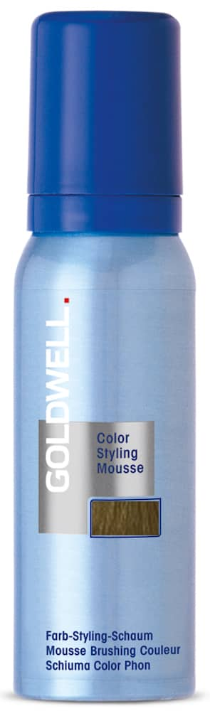 8GB Goldwell Color Styling Mousse
